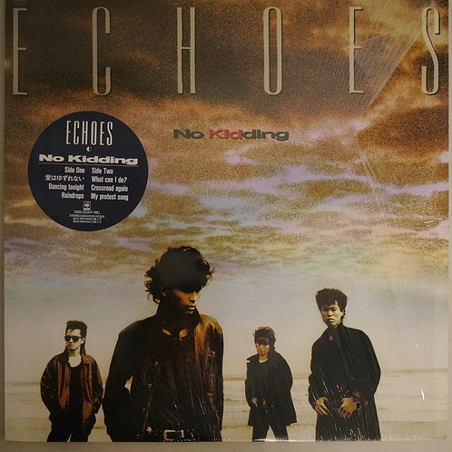 ECHOES / No Kidding