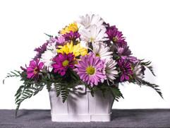 Flowers in Studio