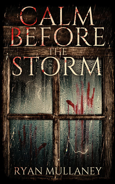 Calm Before The Storm - Ryan Mullaney - Sunbird Books