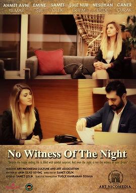 Gecenin_şahidi_olmaz_film_poster.jpg