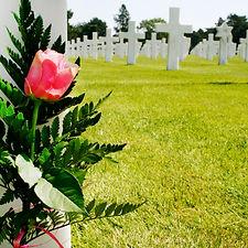stockvault-flower-at-grave133145.jpg