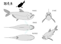 JGB_Pre_CD_Fish_01.jpg