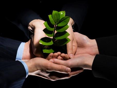 Työelämätaidot ovat parhaillaan yhteen hiileen puhaltamista ja yhdessä tekemistä