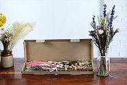 Dried & Wild Letterbox Flowers - Pink