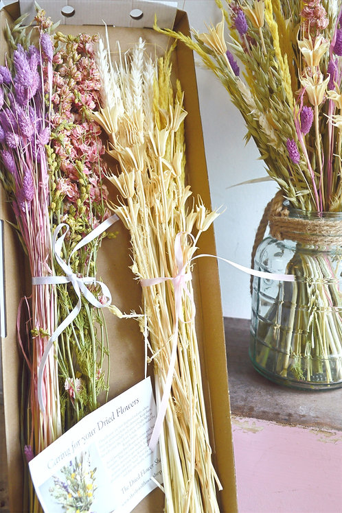 Ice Cream Dried & Wild Letterbox Flowers
