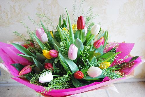 Lincolnshire Tulip Twist