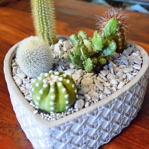 Succulent Stone Heart
