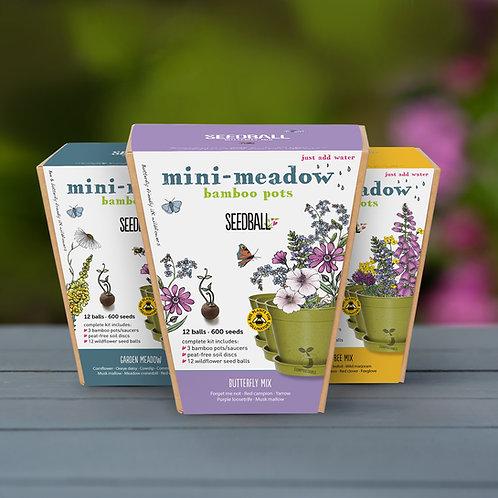 Seedball Mini Meadow Pots
