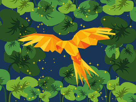 The Parrot with the Golden Feathers