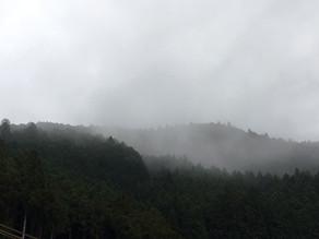 今朝の天河