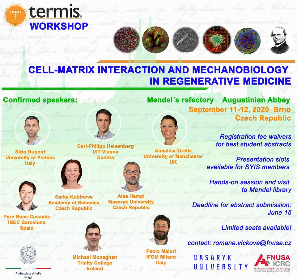 TERMIS-workshop flyer 2.jpg