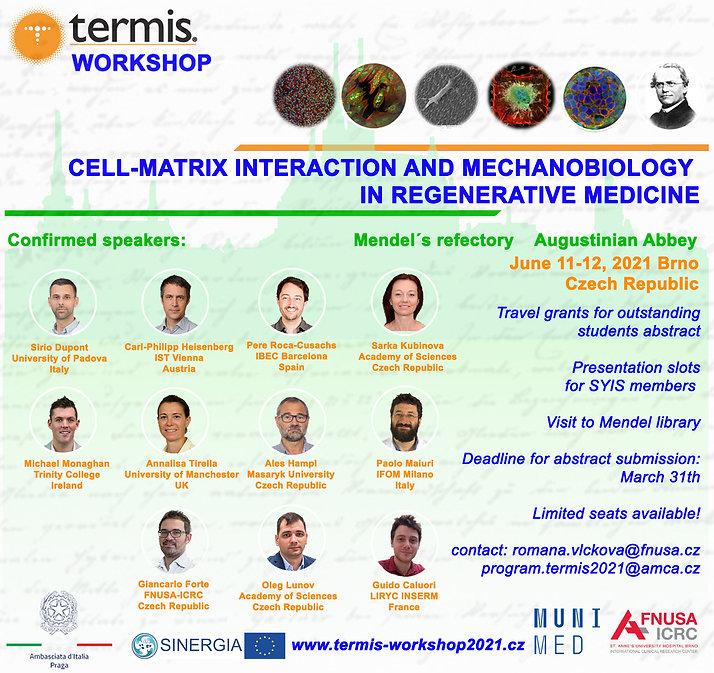 TERMIS-workshop flyer final.jpg