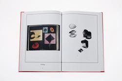 SYSTEMS (catalog)