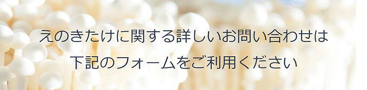 お問合せ 商品用バナー.jpg