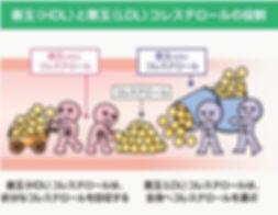 おいしく食べよう 血管2.jpg