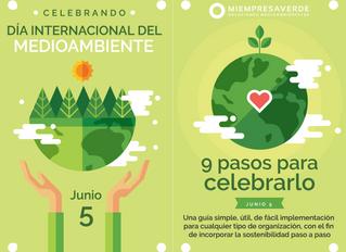 Día del Medioambiente: una guía de 9 pasos