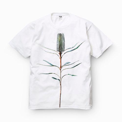 Banksia T(ヘビーウェイトコットン)