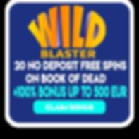 wild_blaster.png