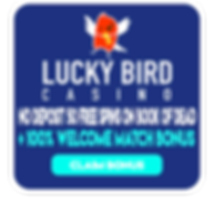 luckybird_casino.png