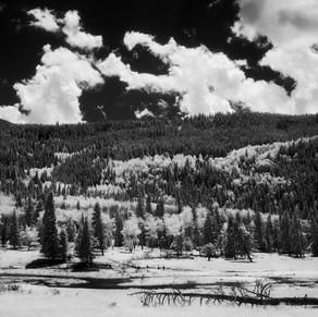 Endo Valley #3