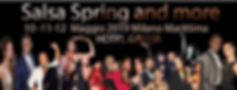salsaspring 2019.JPG