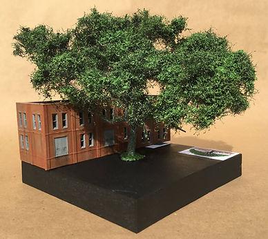 Hero-Trees-N-Wide-500.jpg