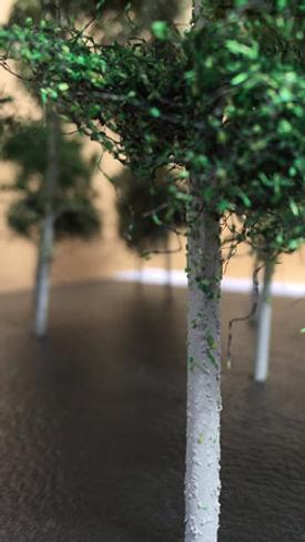 Forest-Trees-4-250.jpg
