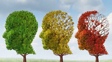 Fall 2016 All About Dementia Educational Series