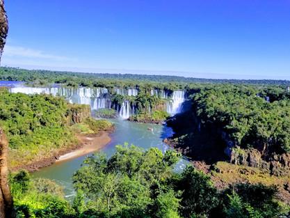 Cataratas del Iguazú, naturaleza viva