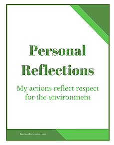 Personal Reflections - My Actions Reflec