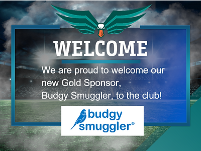 Budgy Announcement.png