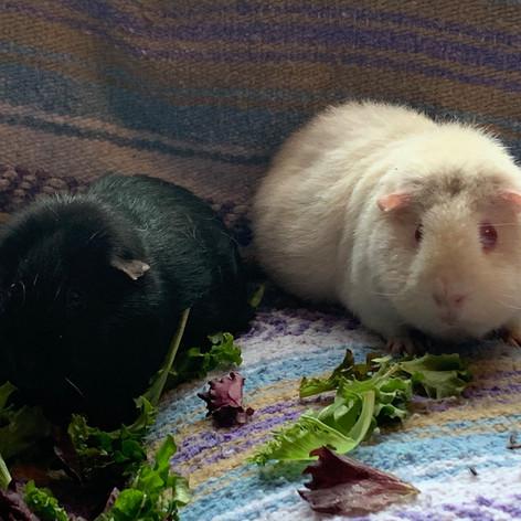 Sophie & Isla
