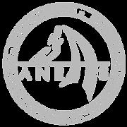 ANRAS 02