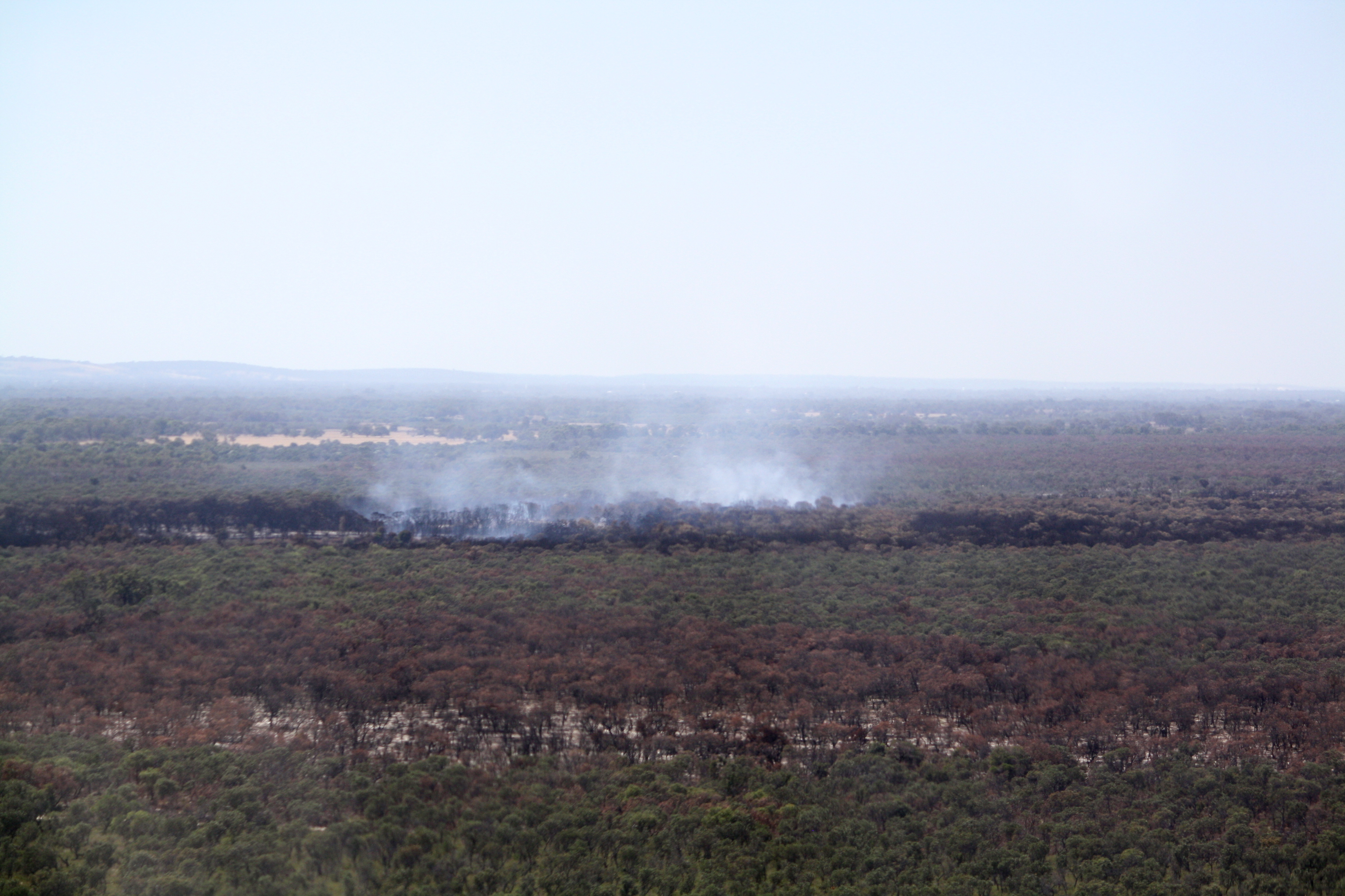 Bush Fires in Gingin 2015