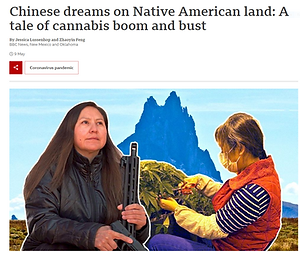 chinese dreams.PNG