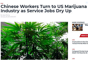 chinese workers turn.PNG