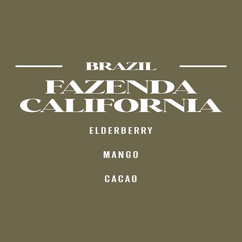 Brazil Fazenda California CSW