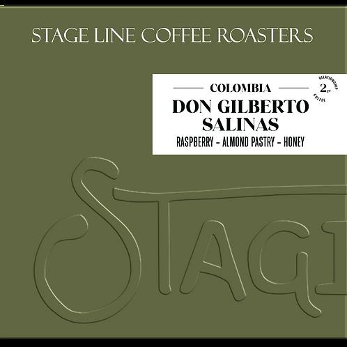 Don Gilberto Salinas