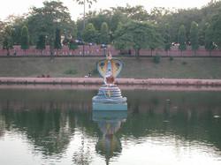 ブダガヤ/ムチャリンダ龍王の池