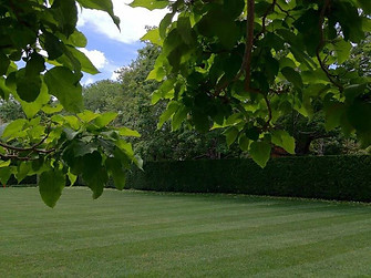 HLA Landscaping. Mowing lawns!.jpg