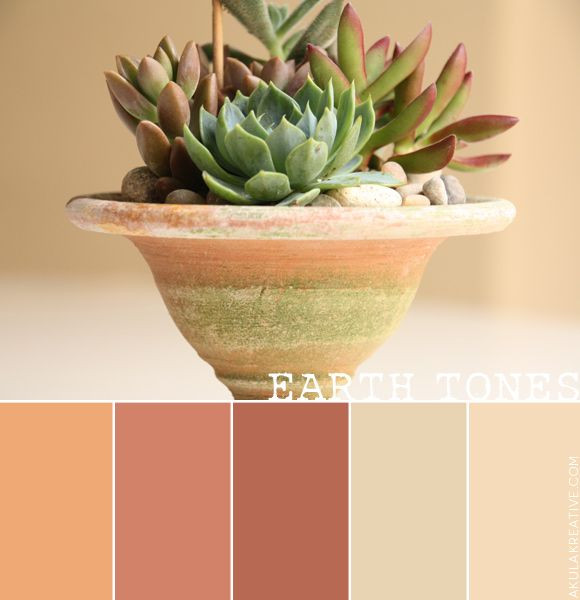 The Comeback of Earthy Colors In 2020