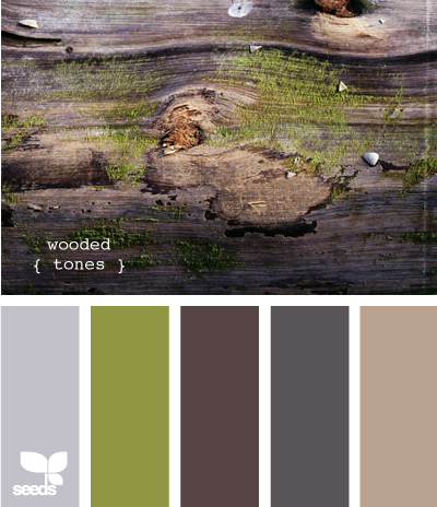 The Comeback of Earthy Color Palette Trends 2020
