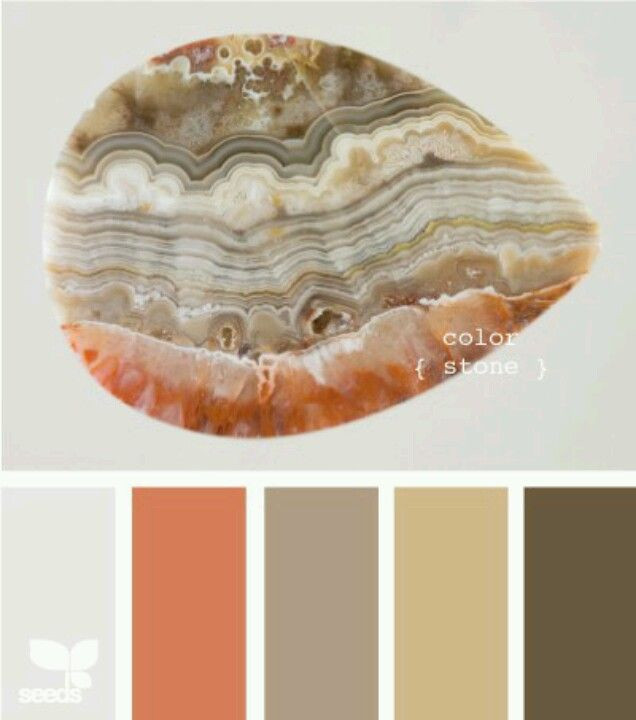 The Comeback of Earthy Palette Trends 2020