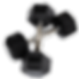 halter-sextavado-4kg-porto-alegre_edited