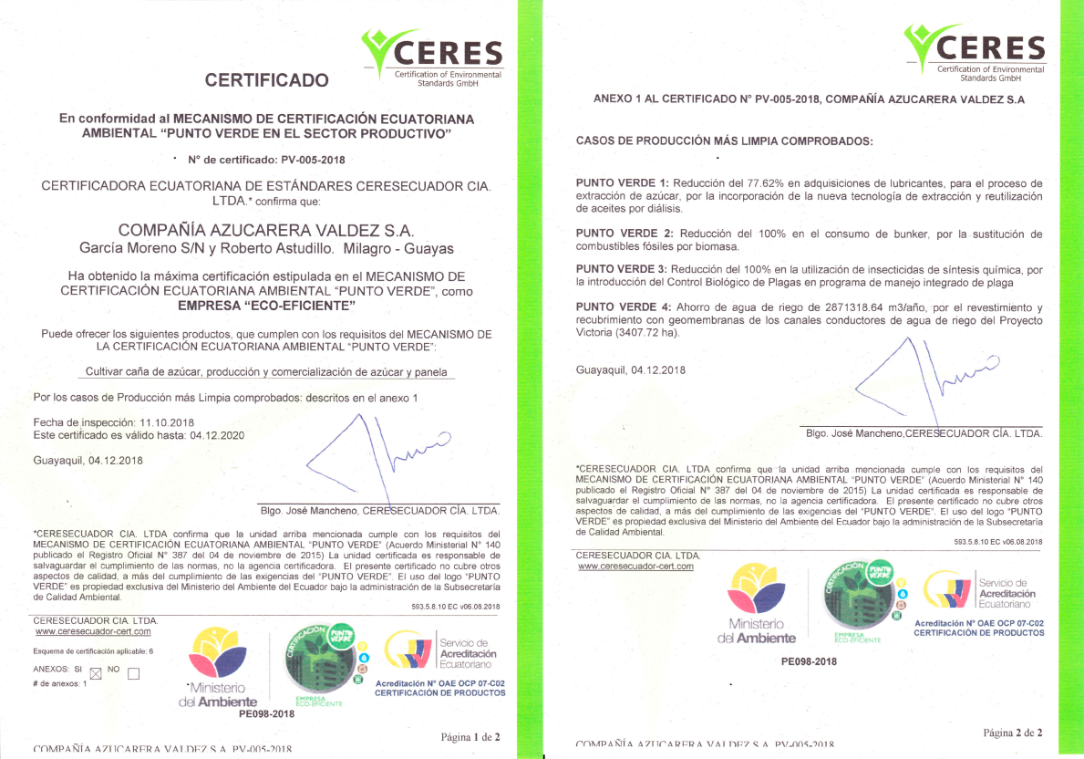 documentos-punto-verde-2018-19