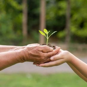 Empresa en Latinoamérica con mayor interés en la sostenibilidad