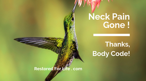 Humming bird has no neck pain