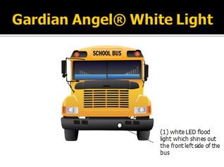 white light.jpg