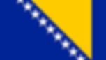 bosnian flag.png