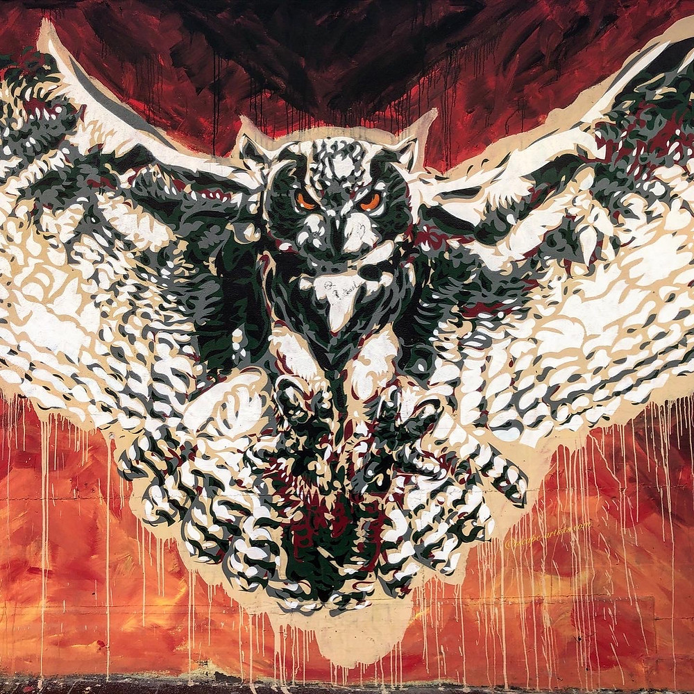 Owl street art by Diavù